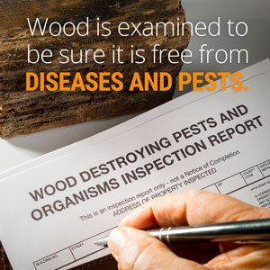 APHIS agents and specialists examine imported wood and timber