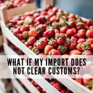 What if my import does not clear customs