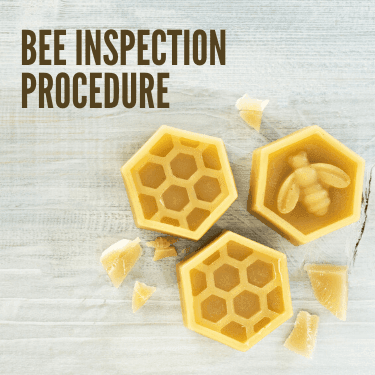 Bee Inspection Procedure