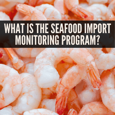 What is the Seafood Import Monitoring Program