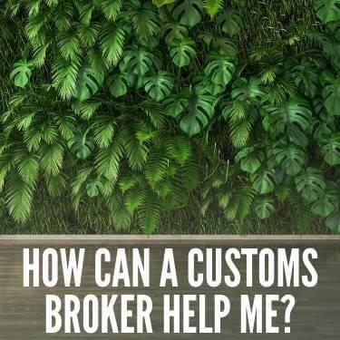How Can a Customs Broker Help Me