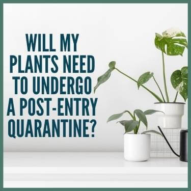 Will My Plants Need to Undergo a Post-Entry Quarantine