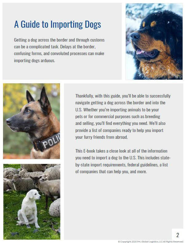 A Guide to Importing Dogs Page 2 Introduction