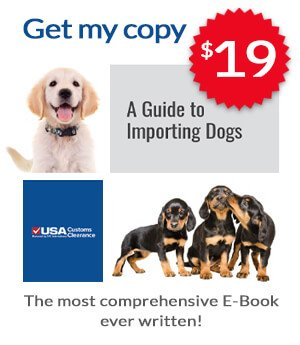 How To Import A Dog Customs Bonds Usa Customs Clearance