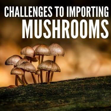 Challenges to Importing Mushrooms