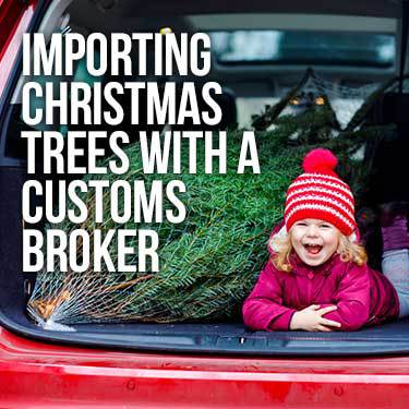 Importing Christmas Trees With a Customs Broker